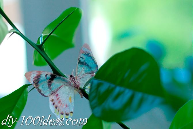 DIY Butterfly From Plastic Bottles (11)