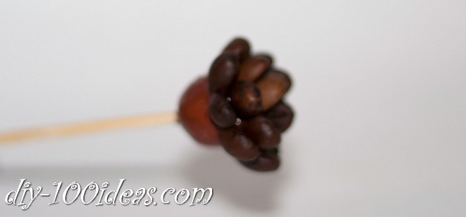 Coffee beans flowers (11)