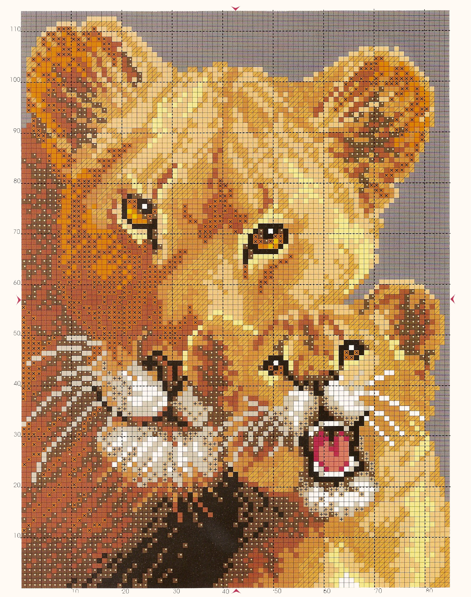 cross stitch pattern lioness and cub (3)