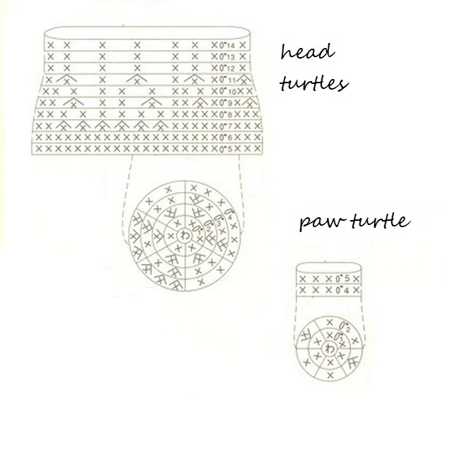 head and neck turtles