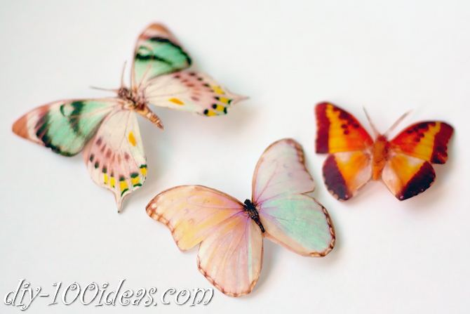 DIY Butterfly From Plastic Bottles (8)