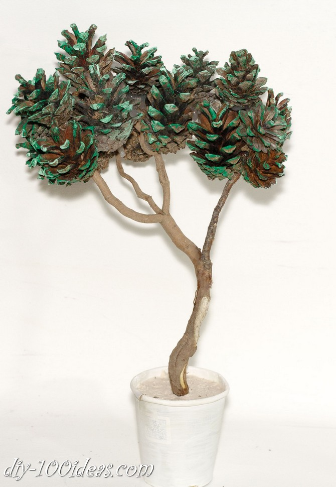 bonsai tree with pine cones (1)